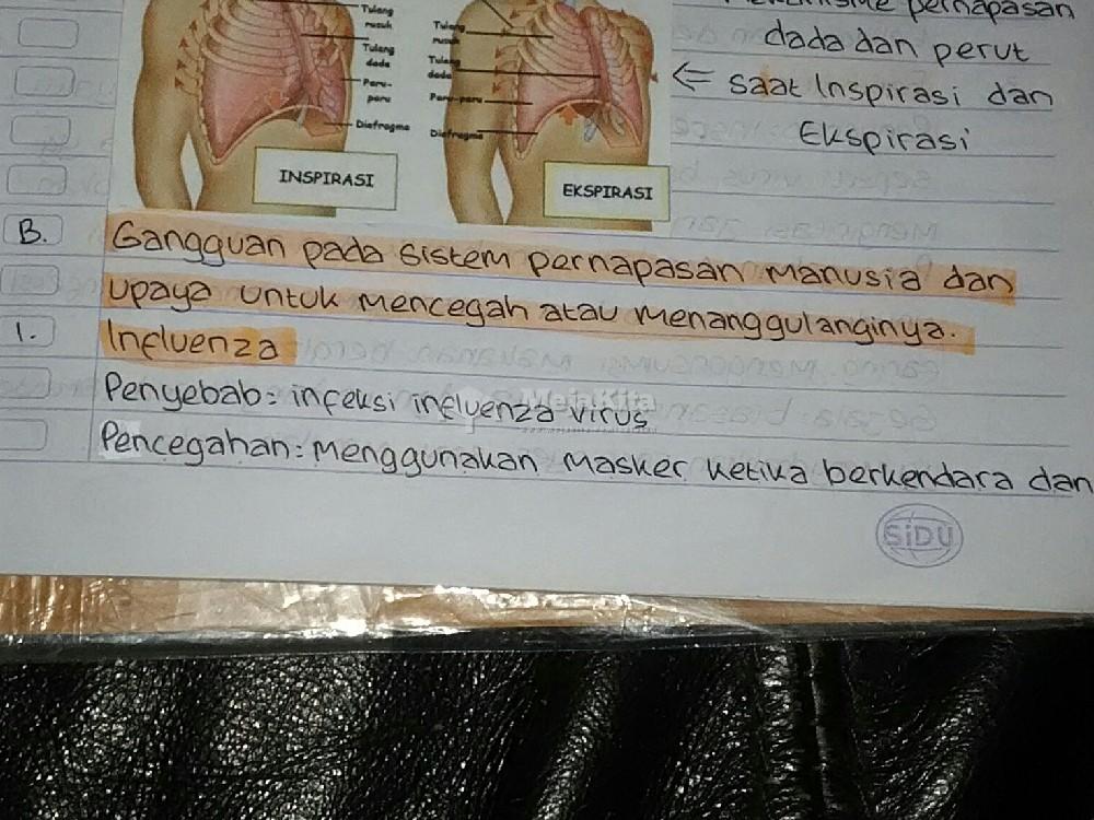 Gambar 1 Catatan Gangguan pada sistem pernapasan manusia - Biologi SMP